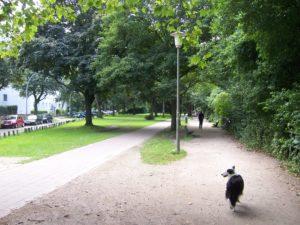 Hundewiesen am Kaiser Friedrich Ufer